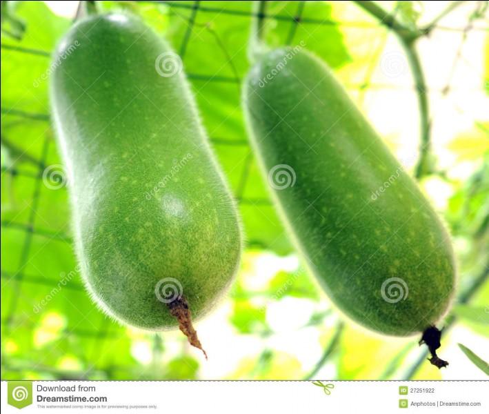Quel fruit est habituellement vert ?