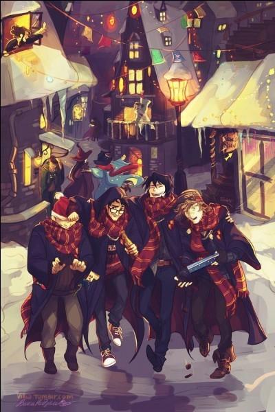 Connais-tu bien Harry Potter?