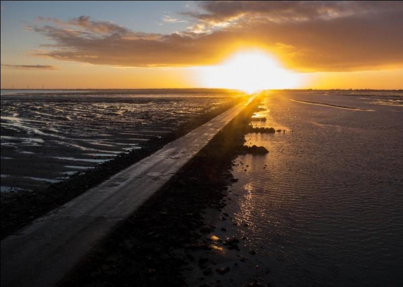 Samedi 7 juillet. L'île de Noirmoutier accueille le grand départ du Tour de France 2018. Comment se nomme ce célèbre passage reliant l'île au continent à marée basse ?