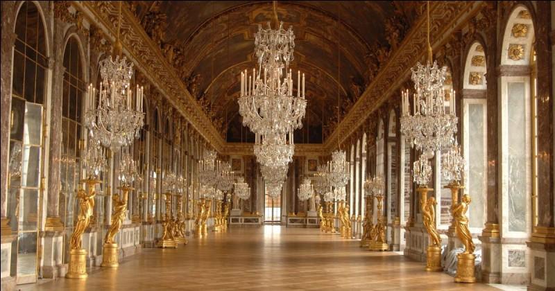 Le château de Versailles fut la résidence de 3 rois de France. Il compte 700 pièces, plus de 2500 fenêtres et 352 cheminées ! Parmi ces pièces, celle présentée en photo est l'une des plus connues. Quel est son nom ?