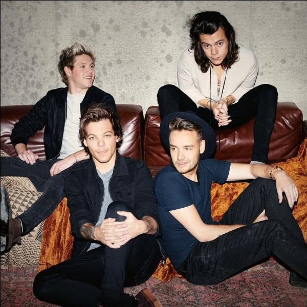 Trouvez le nom de ce boys band anglo-irlandais composé de quatre membres : Liam Payne, Harry Styles, Niall Horan et Louis Tomlinson !