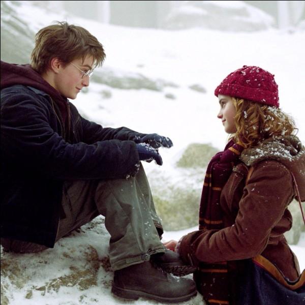 """Dans la saga """"Harry Potter"""", Hermione Granger est amoureuse de Harry Potter."""