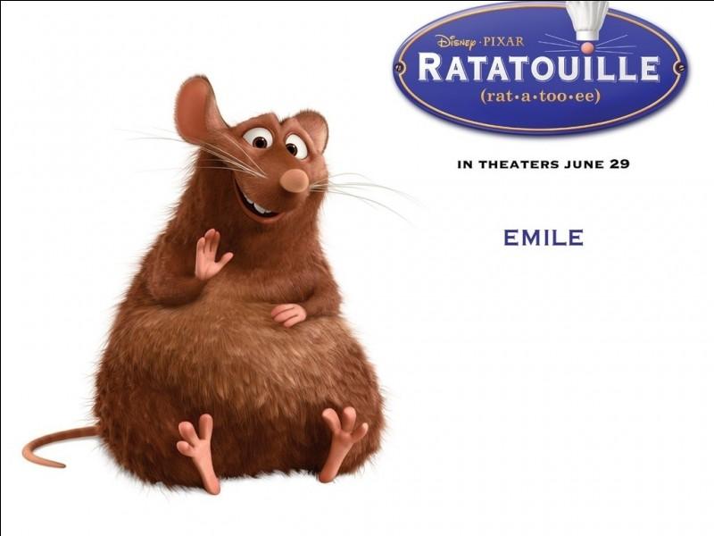 Qui est Émile ?