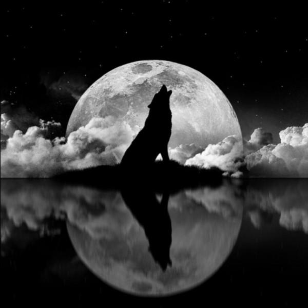 Comment s'appellent les taches sombres sur la Lune ?