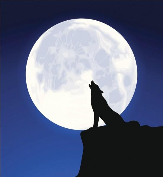 On ne voit qu'une seule face de la Lune.