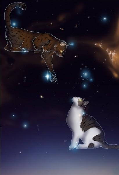Toujours sur Étoile Balafrée, Quel était son nom de chaton ?