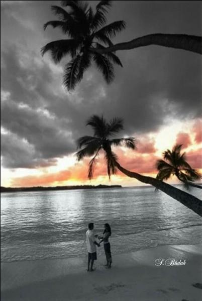 """Il chantait """"Nous marchions sur une plage un peu comme celle-ci, c'était l'automne, un automne où il faisait beau..."""" :"""