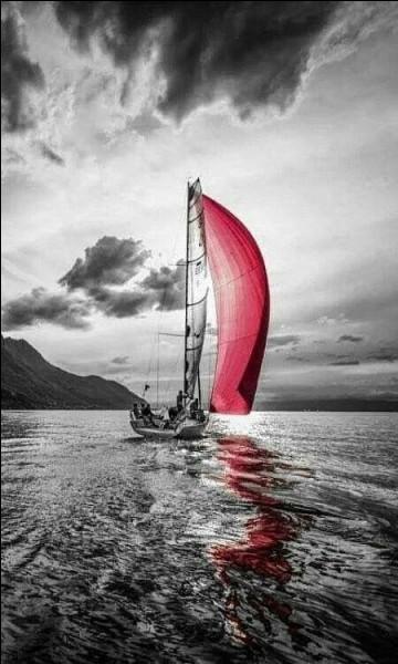 """Qui chantait """"J'ai bien failli être un corsaire, un naufragé rejeté par la mer"""" ?"""
