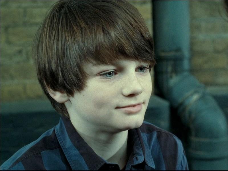 Comment se nomme le deuxième enfant de Harry et Ginny Potter?