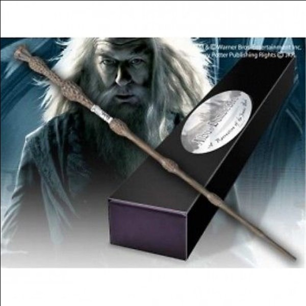 A qui appartient la baguette de Dumbledore après sa mort?