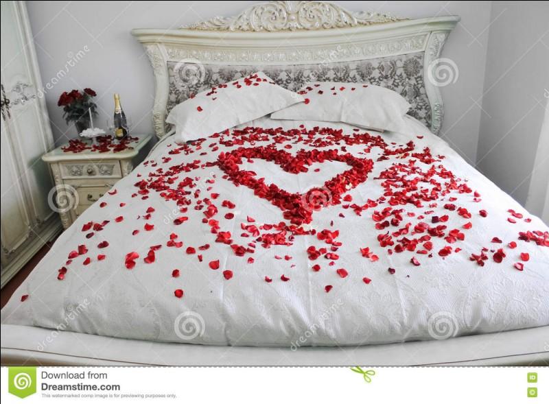 """""""Le lit conjugal"""" est latin et catholique : qui l'a inventé ?"""