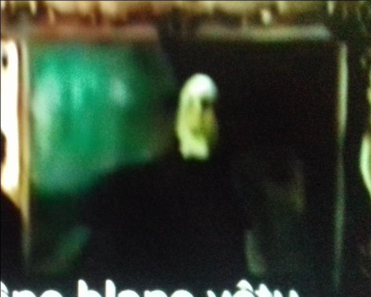 Dans quel tome voit-on pour la première fois Voldemort en chair et en os ?