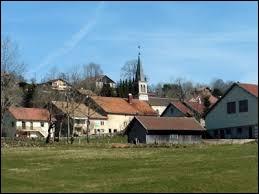 Village de Bourgogne-Franche-Comté , à la frontière suisse, Les Alliés se situe dans le département ...