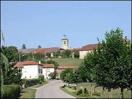 Nous arrivons à Parey-sous-Montfort. Village du Grand-Est, il se trouve dans le département ...