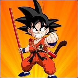 D'où est parti Goku pour atteindre l'île du Tenkaichi Budokai à la nage ?
