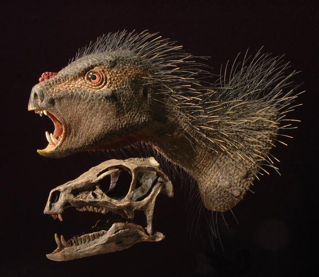 Les caractéristiques communes des dinosaures