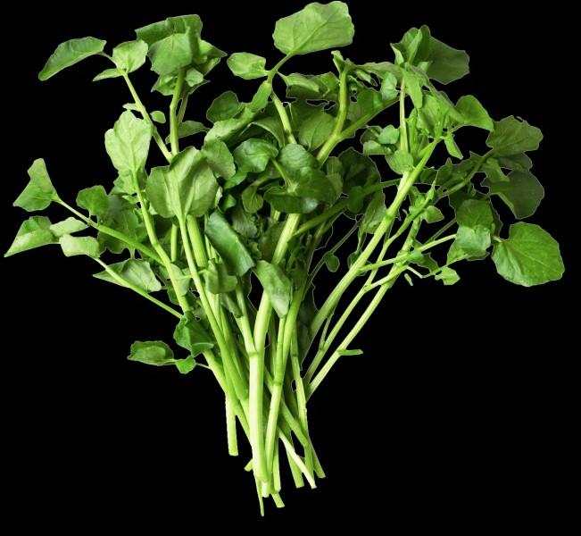 Quel est le nom de ce légume?