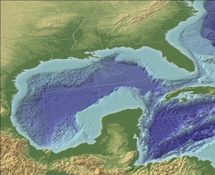Quels sont les deux fleuves qui se jettent dans le golfe du Mexique ?