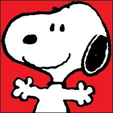 Sur quoi Snoopy aime-t-il s'allonger pour dormir ?