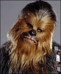 Comment se nomme le wookie ami avec Han Solo ?