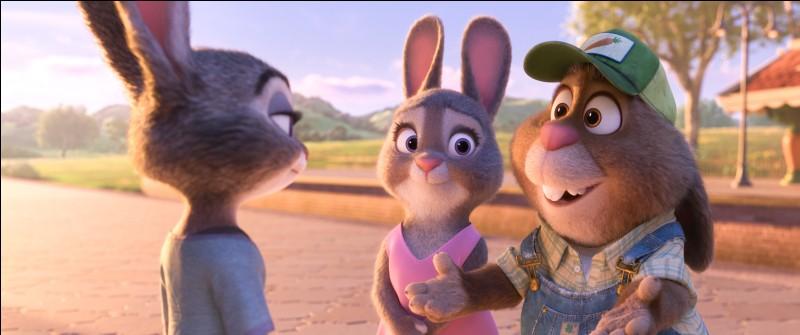 Que font les parents de Judy ?