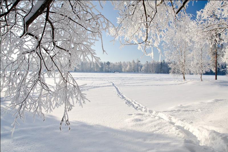 Aimes-tu la neige ?