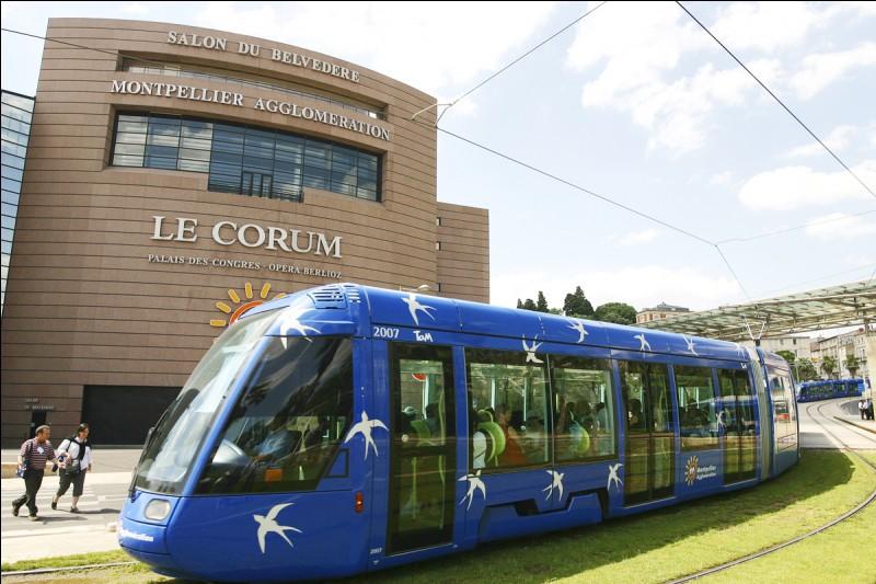 Je vais prendre le tram qui [me conduira] du stade de la Mosson jusqu'au Corum.