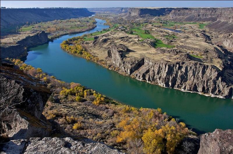 Dans quel pays coule la Snake river ?