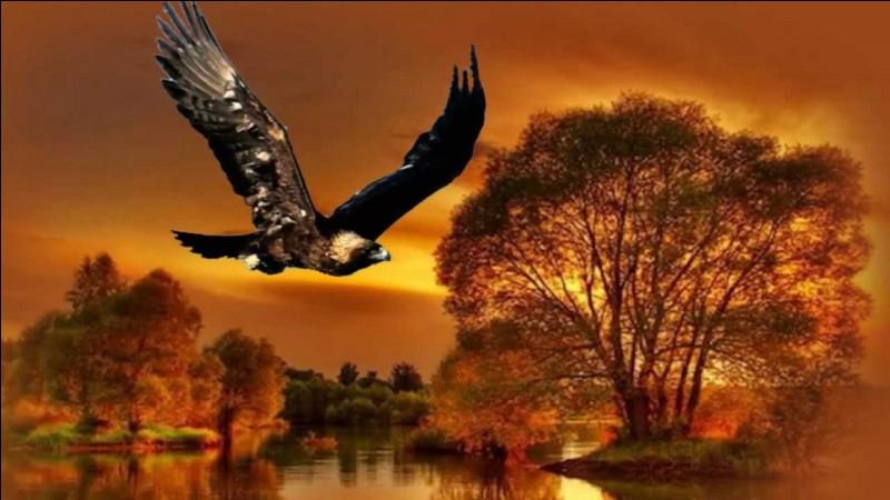 """""""L'aigle noir"""" est une chanson très célèbre de cette chanteuse. Laquelle ?"""