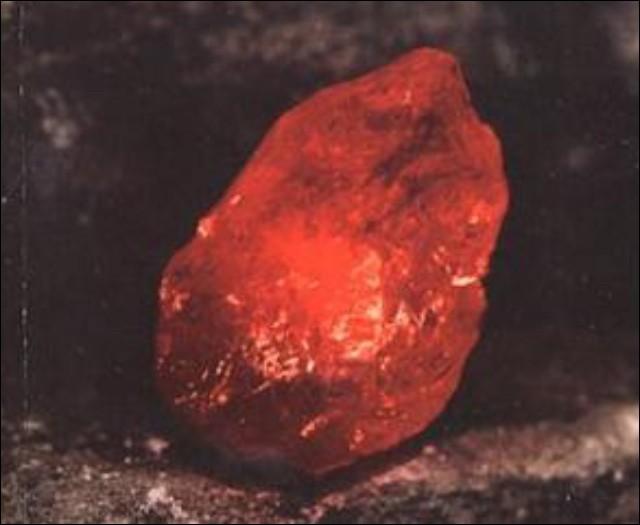 Dans quel coffre se trouve la pierre philosophale à Gringotts ?