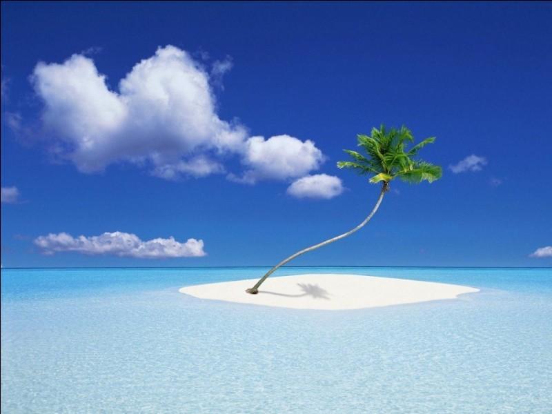 Comment Robinson nomme-t-il son île ?