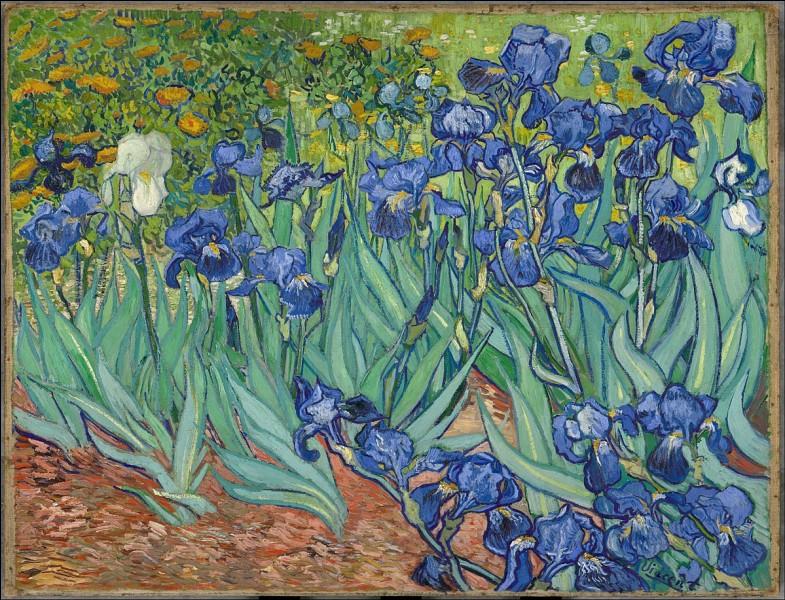 """V - Cette peinture, """"Iris"""", est une œuvre de """"Vincent van Gogh""""."""