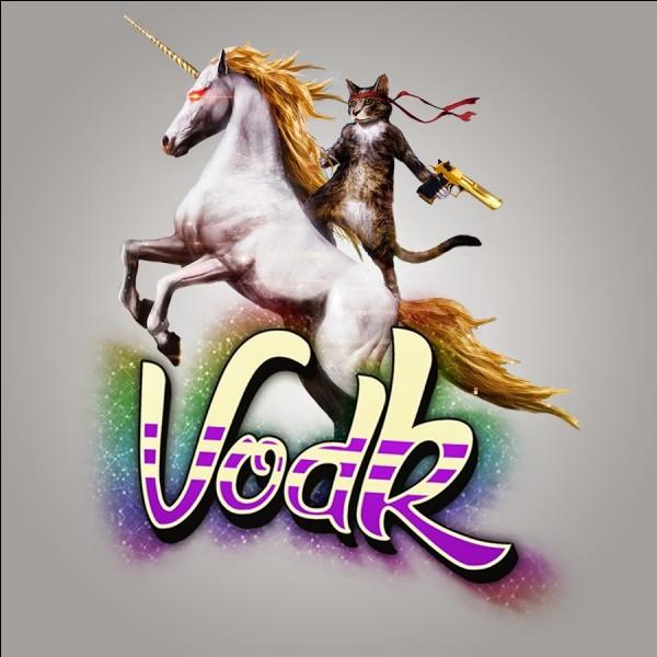 Quelle est la marque de vêtements de Vodk ?