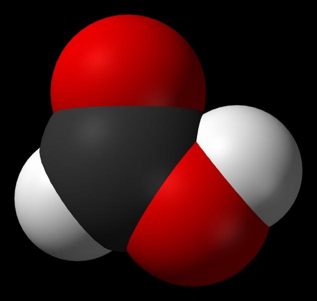L'acide méthanoïque, parce qu'il a été découvert en premier dans les glandes des fourmis, porte le nom de/d'...