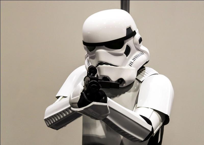 Le personnage sur la photo est un stormtrooper :