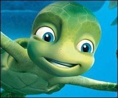 Comment s'appelle cette tortue ?