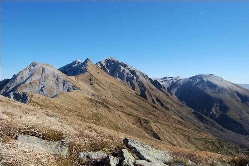 Le point culminant du Massif central, le puy de Sancy, est situé dans le département...