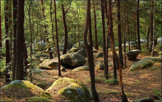 Quand les amoureux se rendaient au puits Cormier, à Fontainebleau (Seine-et-Marne) ils devaient ...