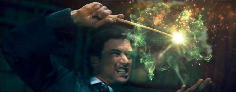 Dans quelle école de magie nos quatre héros ont-ils perfectionné leurs pouvoirs ?