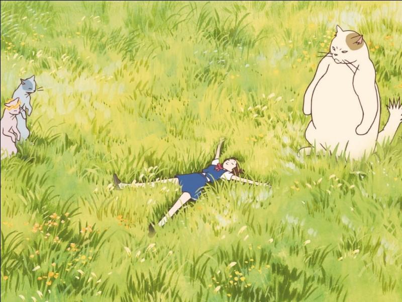 Par où doit passer Haru pour rentrer chez elle ?