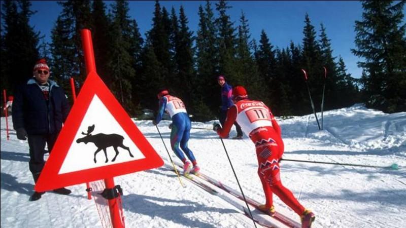 Quelle est la particularité des Jeux qui ont eu lieu à Lillehammer ?
