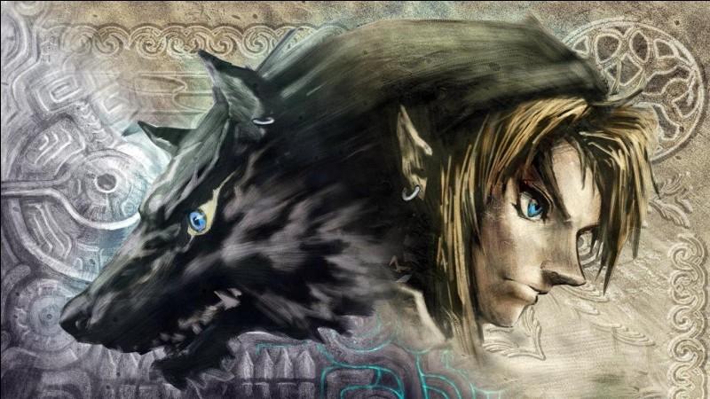 Comment s'appelle le personnage principal de ''Zelda Twilight Princess'' ?