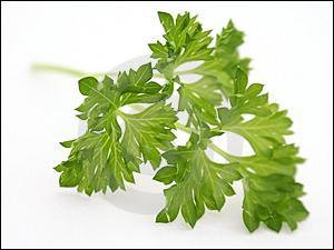 Quelle est cette plante aussi connue sous le tendre nom de 'Petroselinum crispum' ?