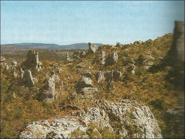 Dans quel département peut-on visiter Montpellier-le-vieux ?