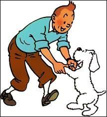 Quelle est la couleur de l'île d'après le titre d'une bande dessinée de Tintin ?