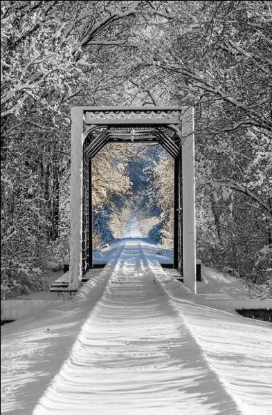"""A quel compositeur autrichien doit-on """"Voyage d'hiver"""" ?"""