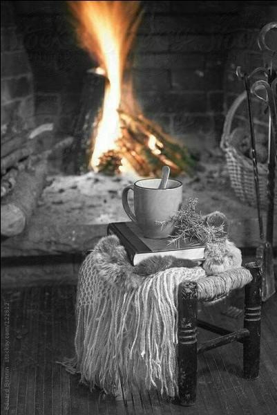 """Qui chantait """"Je n'aime pas l'hiver.... attends je sais des histoires, mais il fait un peu froid ce soir"""""""