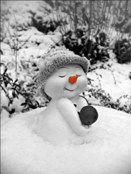 """Qui nous décrit dans son poème """"un bonhomme de neige avec une pipe en bois, un grand bonhomme de neige poursuivi par le froid"""" ?"""