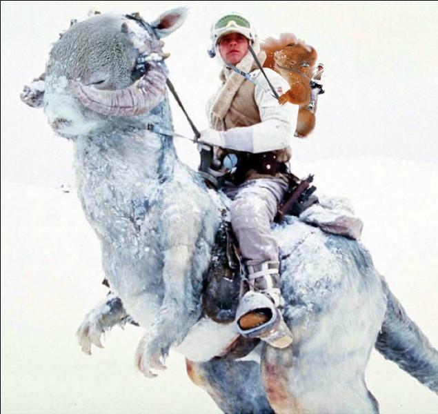 Quel est le nom des chevaux des neiges des rebelles ?