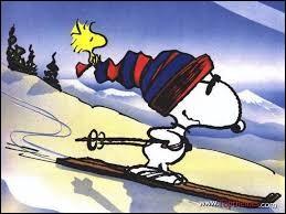 Voici un bien étrange personnage équipée de skis. Quel est son nom ?
